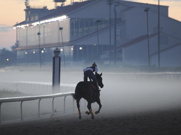 A horse makes his way through the pre-dawn fog at the Fair Grounds Race Course in New Orleans in 2010. The Fair Grounds barn area opened earlier than normal this season to accommodate horses traveling from recently concluded meets at Arlington Park and Evangeline Downs.