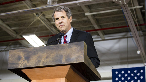 Sen. Sherrod Brown at a campaign rally for Democratic presidential candidate Hillary Clinton in June.