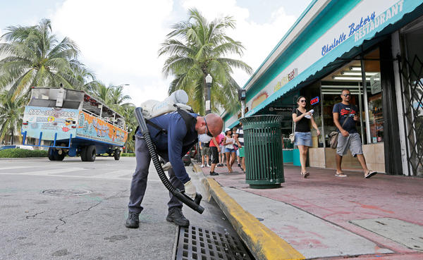 "County mosquito control inspector Yasser ""Jazz"" Compagines sprays a storm drain in Miami Beach to thwart mosquitoes that spread Zika."