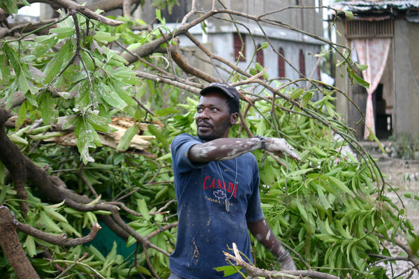 Jean Marc Verdieu's small restaurant called Vierge Caridad or The Virgin of Charity was destroyed by the pounding rain of Hurricane Matthew. He's clearing the limbs from a mango tree that crashed into the corrugated tin building.