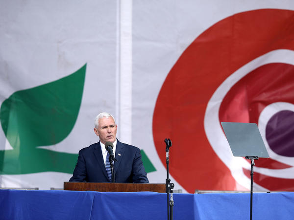 Vice President Pence addresses the rally on the National Mall on Friday.