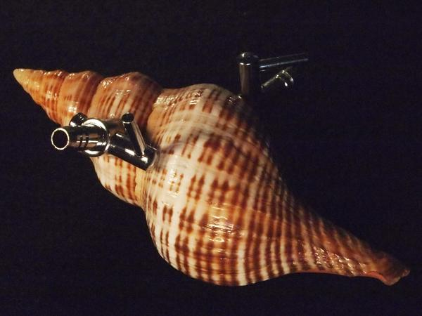 """<strong>Breathing Apparatus for Mollusks: </strong>This life support system would allow sea snails to migrate to land when ocean acidification imperils their shells. Keats' exhibit also features a version that would allow land snails to """"escape to the ocean in case of extreme acid rain."""""""