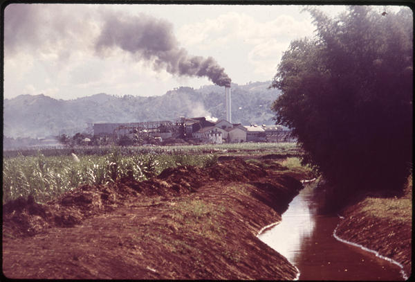 A Puerto Rican sugar refinery in 1973. In 1964, sugar accounted for almost half of all agricultural sales on the island, and sugar manufacturing accounted for 23 percent of all wages that Puerto Ricans earned. Then, within just a few years, the industry collapsed.