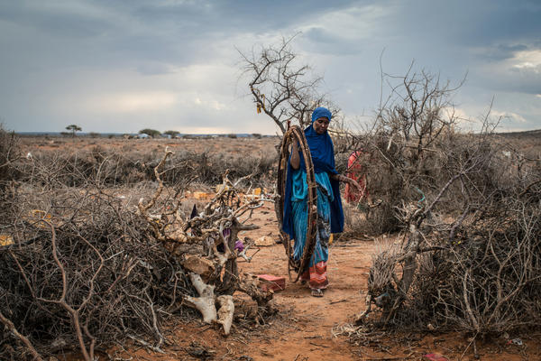 Dheg Mohamed dismantles her home on a plain outside Aynabo, Somaliland. She had to relocate after successive seasons without rain left her well dry.