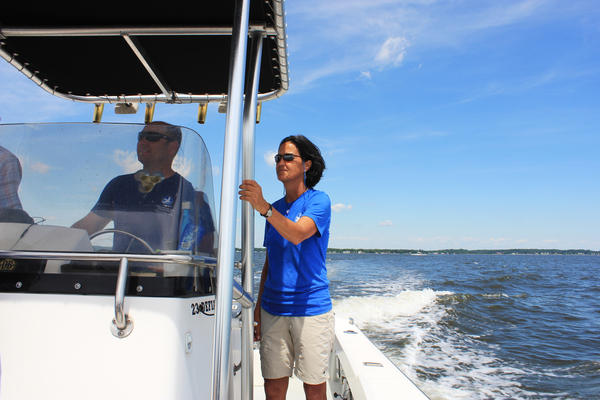 Beth McGee, director of science and agricultural policy at the Chesapeake Bay Foundation, rides on a boat in the Chesapeake Bay. The foundation conducts regular tests on the water.