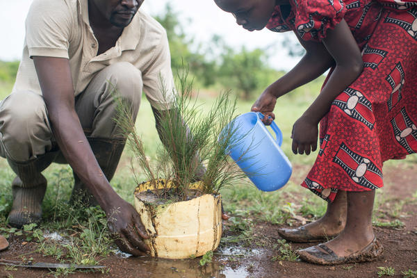 """Otieno and his oldest daughter plant one of the cypress saplings. He says he'll designate a different section of the grove for each child to help him tend. """"It's going to be like their bank account."""""""