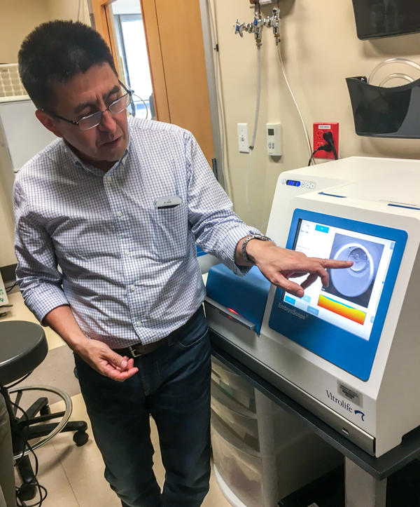 Shoukhrat Mitalipov points to an image of an edited embryo inside an incubator at the Center for Embryonic Cell and Gene Therapy in Portland, Ore.