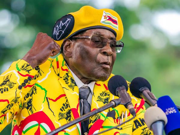 Zimbabwe's President Robert Mugabe addresses supporters at his party headquarters on Nov. 8.