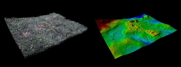 Visualization of separate LiDAR layers of the forest cover and of vegetation-free ground surface of the site of El Zotz.