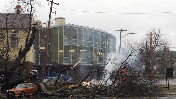 Power lines smolder behind a fallen tree outside the Lincoln School in Providence, R.I., during the nor'easter Friday.