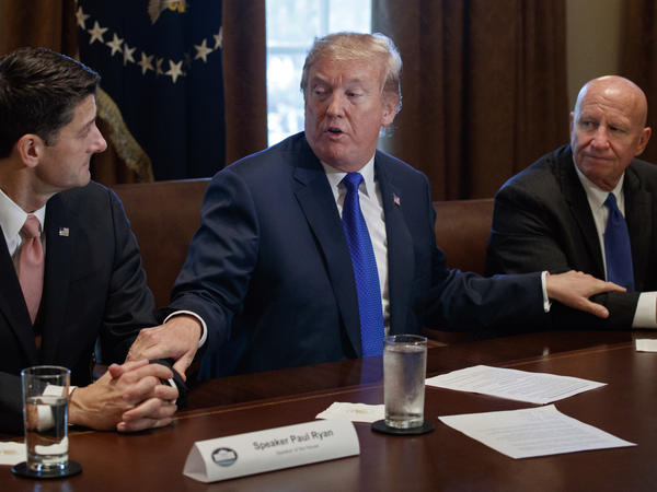 President Trump speaks during a tax policy meeting last November with House Speaker Paul Ryan and Ways and Means Committee Chairman Kevin Brady.