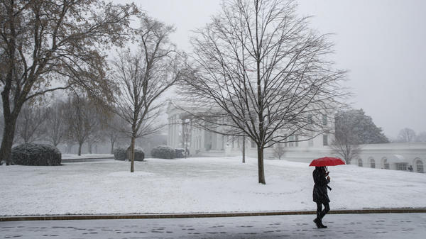 Snow falls outside the White House during a spring storm on Wednesday in Washington, D.C. The nor'easter impacted much of the East Coast, canceling flights, schools and work for many residents.