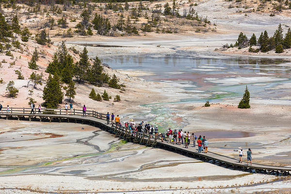 Steamboat Geyser is located in the Norris Geyser Basin of Yellowstone National Park.