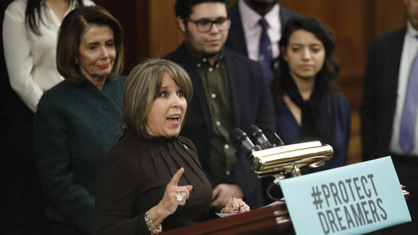Rep. Michelle Lujan Grisham, D-N.M., speaks at a news conference calling for the passage of the Dream Act in January, along with House Democratic leader Nancy Pelosi. Lujan Grisham is one of five Democratic lawmakers, along with nine Republicans, receiving praise over immigration, in the form of paid ads, by the Koch network.