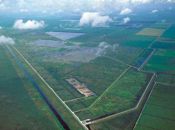 Sugarcane fields and stormwater treatment areas near the Everglades Agricultural Area.