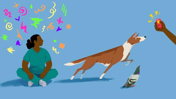 The clicker became a popular tool for dog training in the 1980s. Today, it has also caught on with humans — helping people to become better dancers, fishermen, golfers, and now, surgeons.