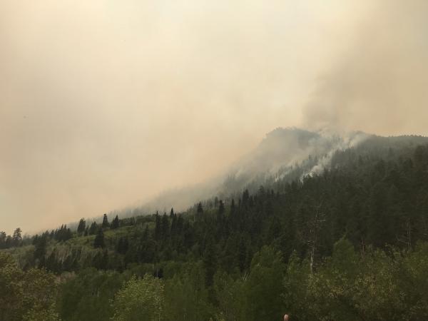 The 416 Fire near Durango, Colo., on June 2.