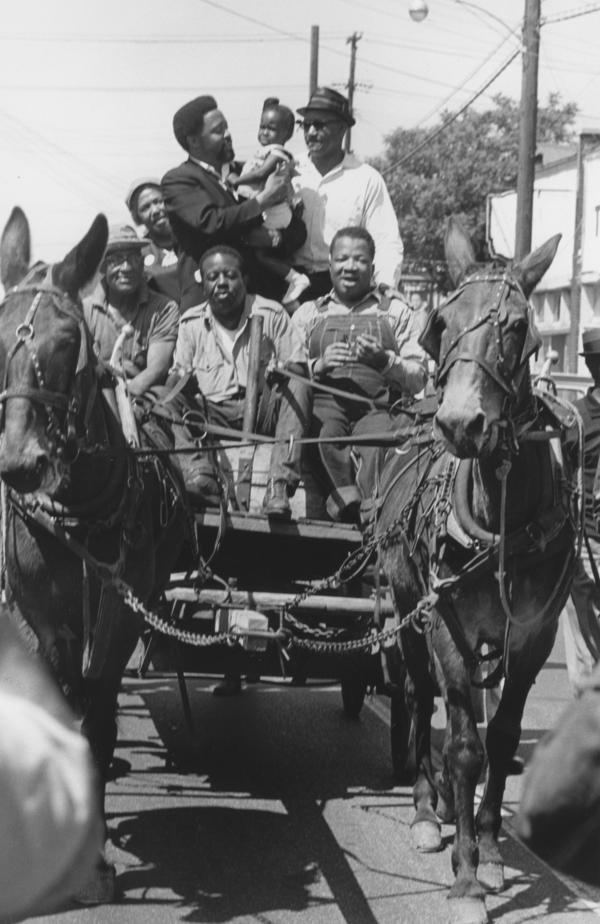 The ages of participants on the Mule Train ranged from 8 months old to 70 years old.