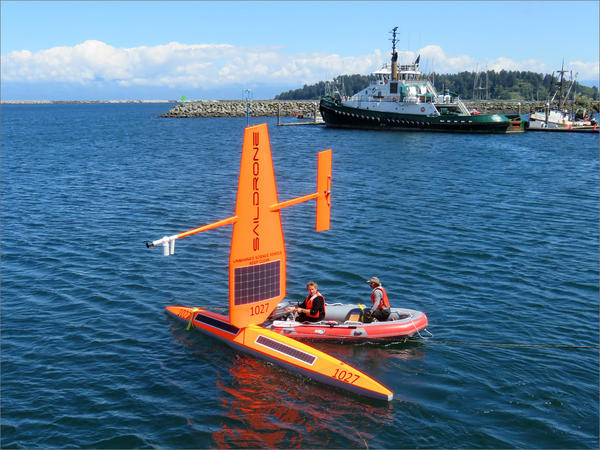 Saildrone company founder Richard Jenkins and an assistant make last minute checks at the Neah Bay marina before sending the unmanned vehicle to sea.