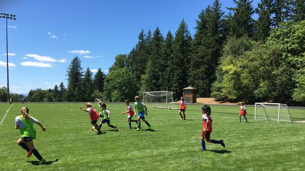 Children at the Bernie Fagan Soccer Camp in Portland, Ore., where soccer's next generation had their own opinions about Tuesday's double goose eggs at the World Cup.