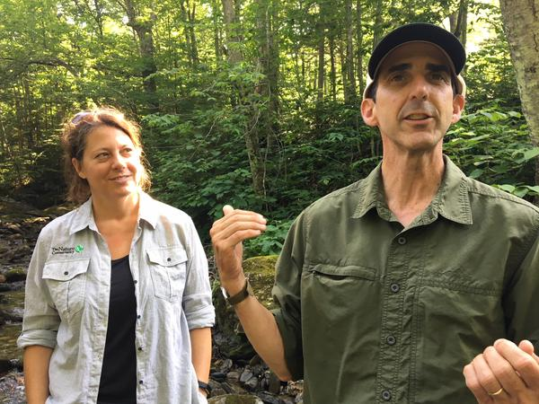 The Nature Conservancy's Heather Furnam and Jim Shallow outline the carbon storage piece of the Burnt Mountain project