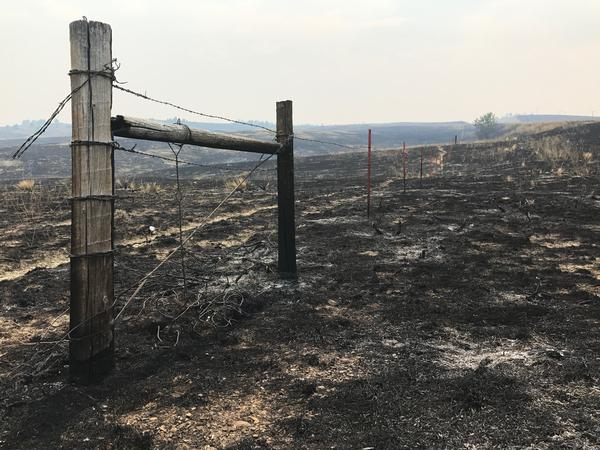 Climate change, longer fire seasons, and way more people in the West all play a part in bigger and more dangerous wildfires.