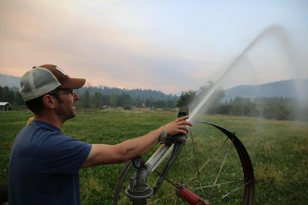 """<p>Jason Rambo ignored a Level 3 or """"Go Now"""" evacuation order to protect&nbsp;his recreational cannabis farm with an irrigation sprinkler.</p>"""