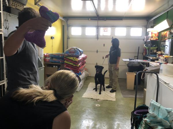 Stacie Kwacala behind the camera at the McDonough County Animal Shelter