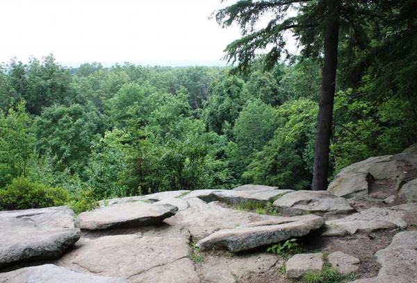 The Conservancy for Cuyahoga Valley National Park says it will watch for new developments in oil and gas drilling in the park, following President-elect Donald Trump's suggestion that energy exploration on federal lands should increase.