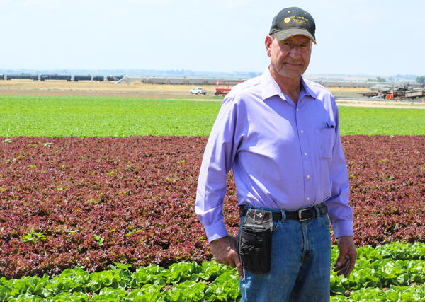David Petrocco at his farm in Greeley, Colorado. He says the guestworker program should prioritize U.S. workers but also be fair to farmers and foreign laborers.
