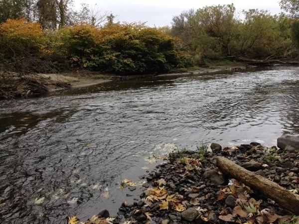 A stretch of the Housatonic River that under an EPA proposal would be dredged to remove PCBs.