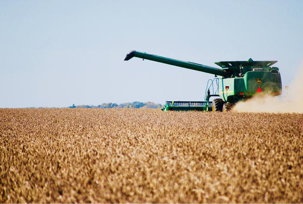 How does President Trump's trade war with China affect Michigan's soybean farmers?