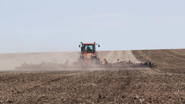 Andrew Heineman's twin brother, Marcus, pulls a cultivator across a different field where they will plant seed corn this year, another alternative they selected when the price of corn started to fall and a new seed corn plant opened up nearby.