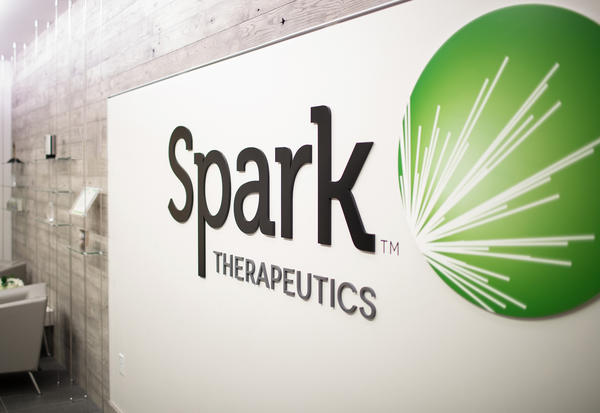 A panel of experts has recommended that the Food and Drug Administration approve a treatment developed by Spark Therapeutics for a rare form of blindness.