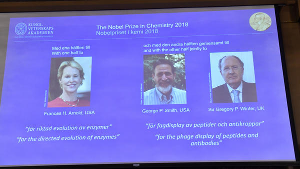 A screen displays portraits of Frances Arnold of the United States, George Smith of the United States and Gregory Winter of the U.K. during the announcement of the winners of the 2018 Nobel Prize in chemistry at the Royal Swedish Academy of Sciences on Wednesday.