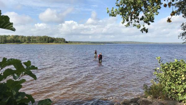 A team uses metal detectors to search the lake where Saga made her discovery.