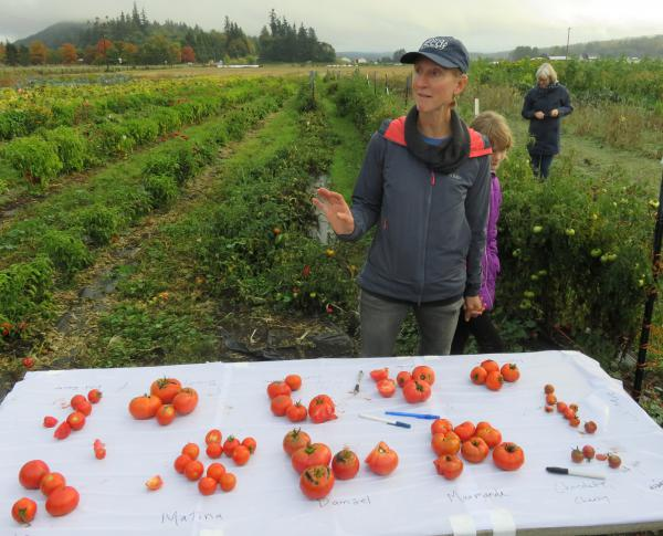 Organic Seed Alliance Program Director Micaela Colley at the nonprofit's research farm in Chimacum, Washington.