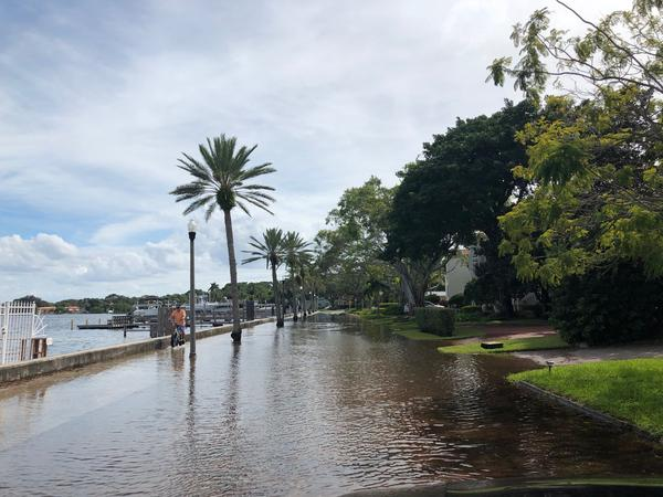 Coffee Pot Boulevard flooding in St. Pete Tuesday afternoon.