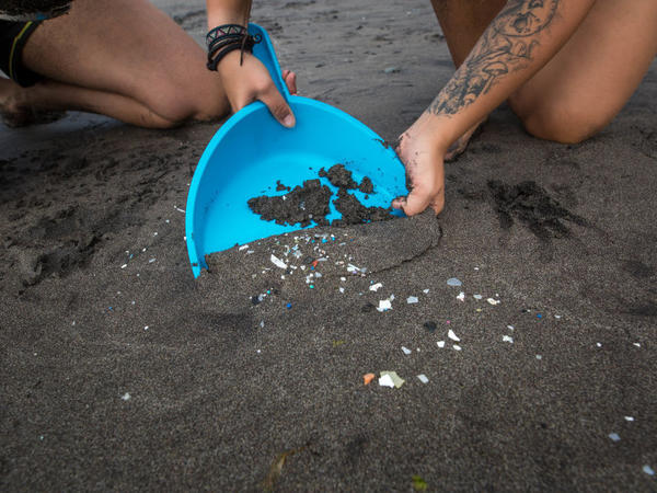 Microplastics are not just showing up on beaches like this one in the Canary Islands — a very small study shows that they are in human waste in many parts of the world.