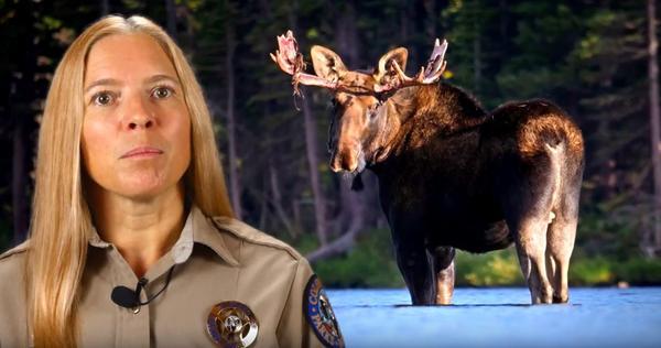 Snapshot of Colorado Parks and Wildlife Educational Video