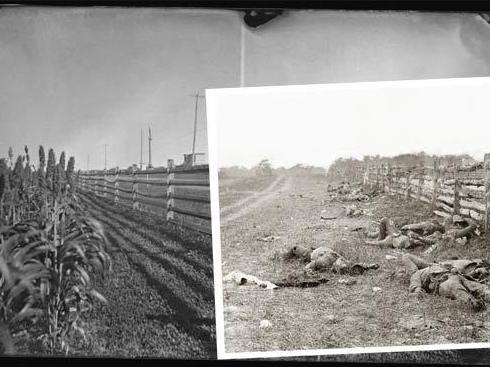 Alexander Gardner captured the Confederate dead along the Hagerstown Pike at Antietam. One hundred fifty years later, sorghum lines what is now a paved road.