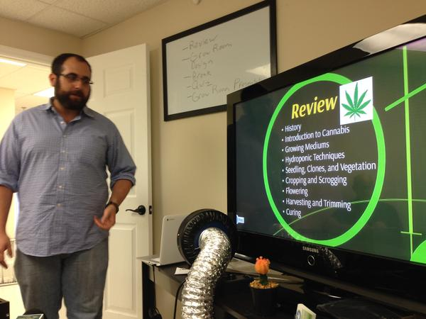 The school's first professor of cannabis, Carlos Hermida, helps students review for an upcoming quiz.