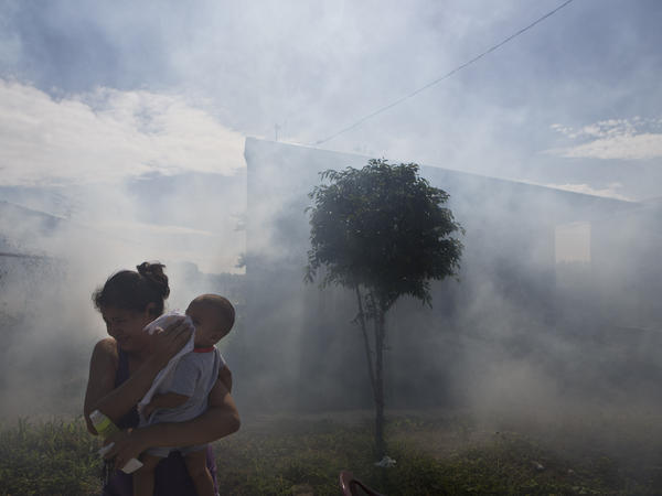 A woman protects her child's face in Managua, Nicaragua, as health workers fumigate for mosquitoes that carry chikungunya. The virus started spreading through Nicaragua and Mexico in the fall.