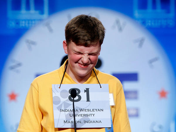 Nathan J. Marcisz of Marion, Ind., focuses intently as he spells a word during the 2010 Scripps National Spelling Bee.