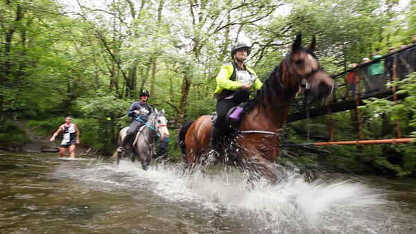 Horses, riders and runners crossed three streams in the course of their 22-mile race through the hills of central Wales. The average finish time was the same for both species — four hours.