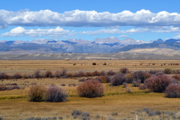 The Wind River Range provides a backdrop for the Upper Green River Valley, one of the strongholds of greater sage grouse in Sublette County, Wyo. Grouse breed and winter on the large expanses of federally managed sagebrush uplands, but need the wet meadows in the summer for their growing broods.