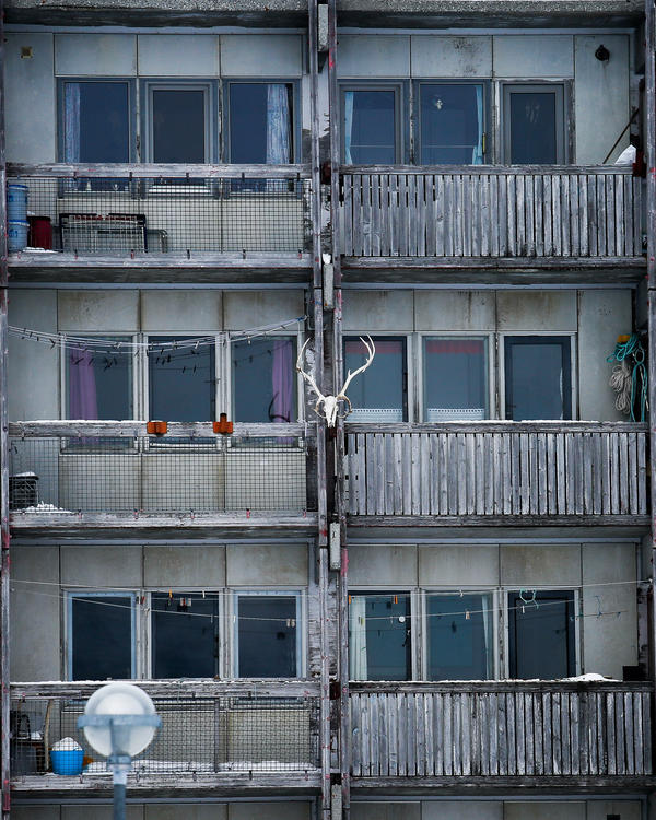 A reindeer skull ornaments a Nuuk apartment block.