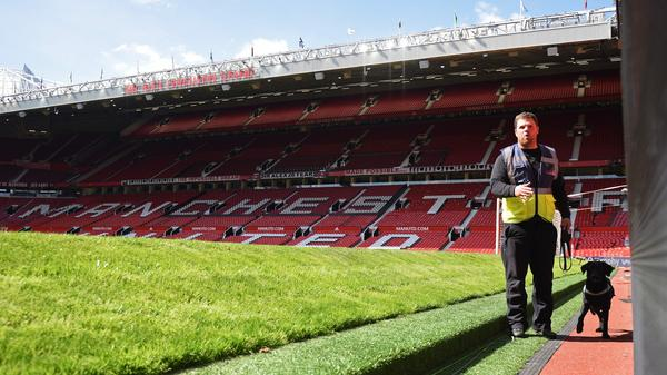 A sniffer dog works on the side of the pitch following the evacuation of Old Trafford stadium in Manchester, U.K., on Sunday. The match between Manchester United and Bournemouth was postponed after a suspicious package was discovered at the stadium.