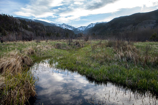 Moraine Park is a grassy valley inside Rocky Mountain National Park.