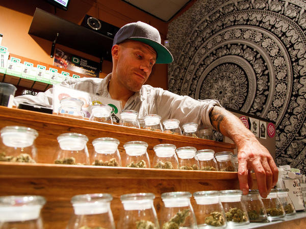 Shane Cavanaugh, owner of Amazon Organics, a pot dispensary in Eugene, Ore., arranges the cannabis display in his store in September 2015.